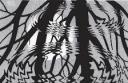 "M. C. Echer, ""Rippled Surface"". 1950 m."