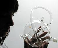 """Susana Soares, """"Bičių projektas"""", 2007"""