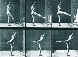 """Pusiausvyra. Edweard Muybridge """"Gyvūno judesių studijos"""". 1887"""